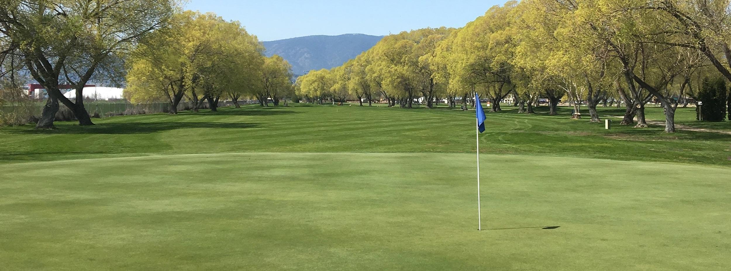 MichaelBrook-Golf Course Fairway